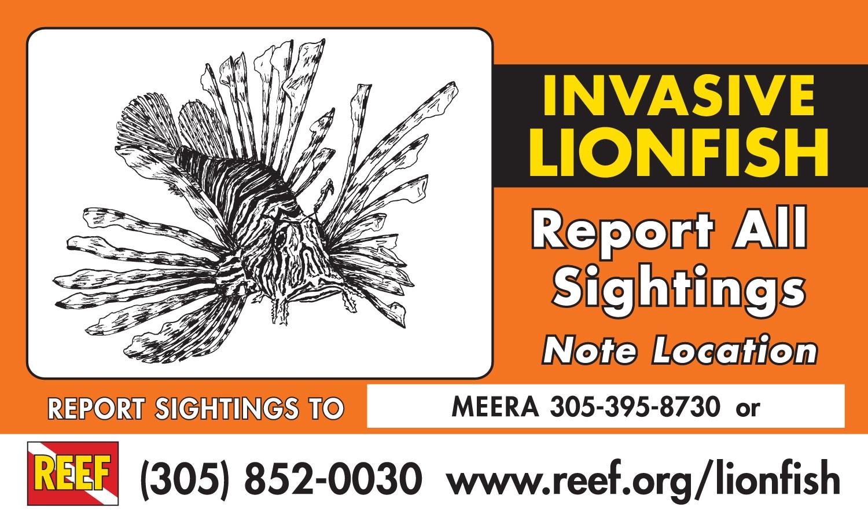 Invasive Lionfish Hotline