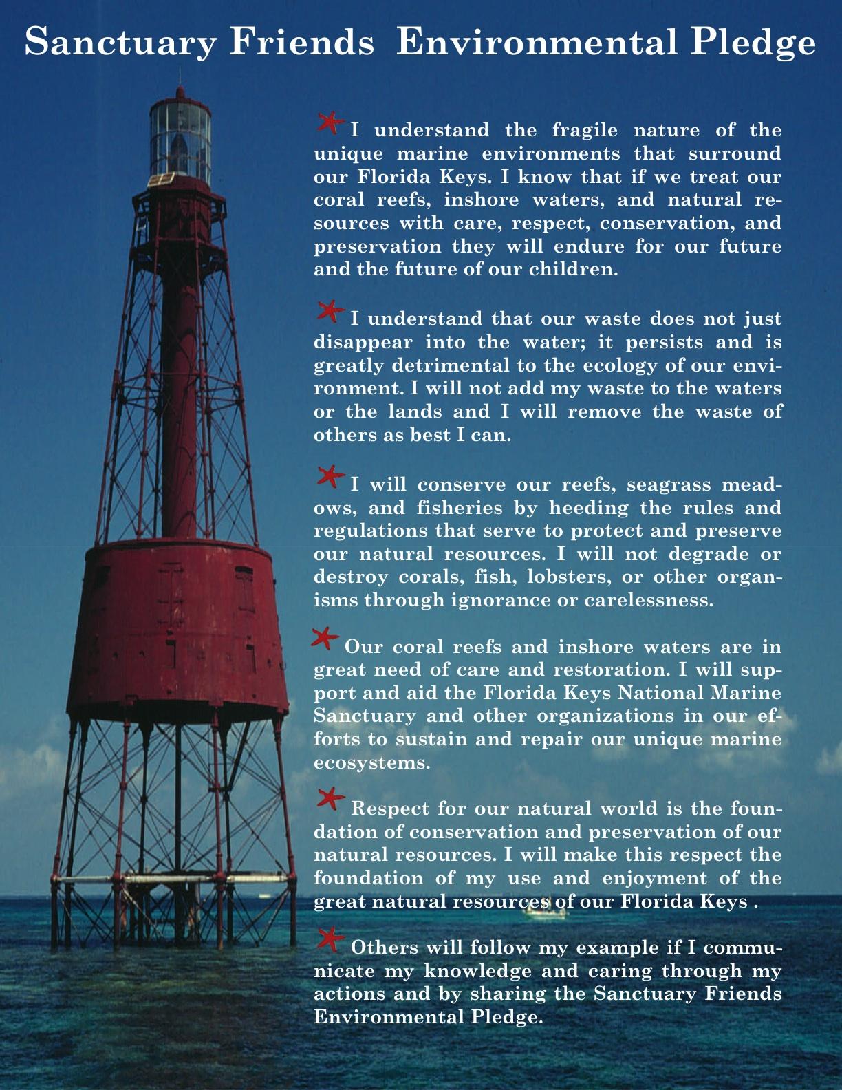 Environmental Pledge